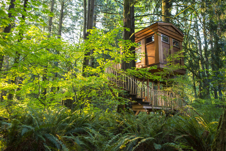 Bonbibi Treehouse, Treehouse Point
