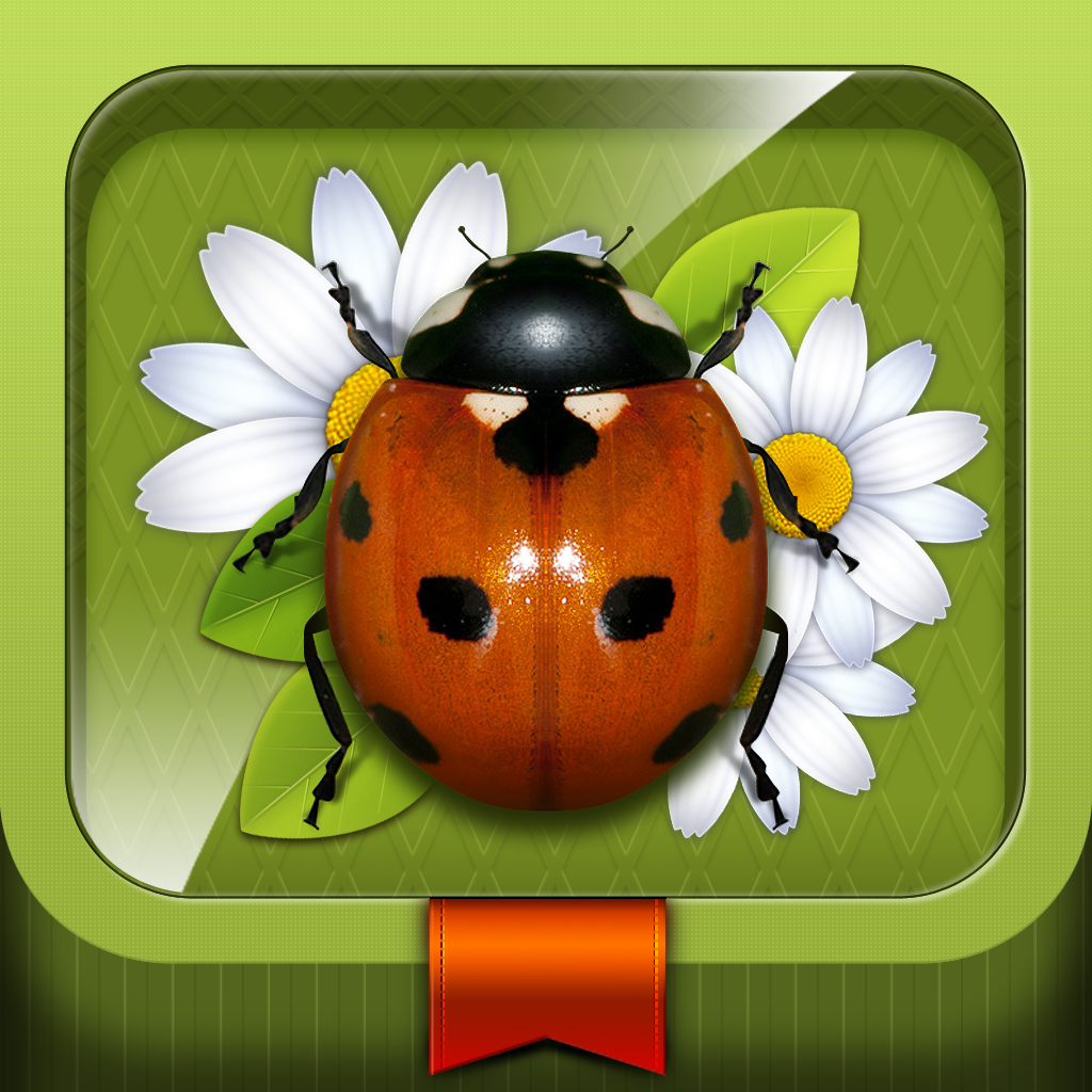 meet the insects ipad app