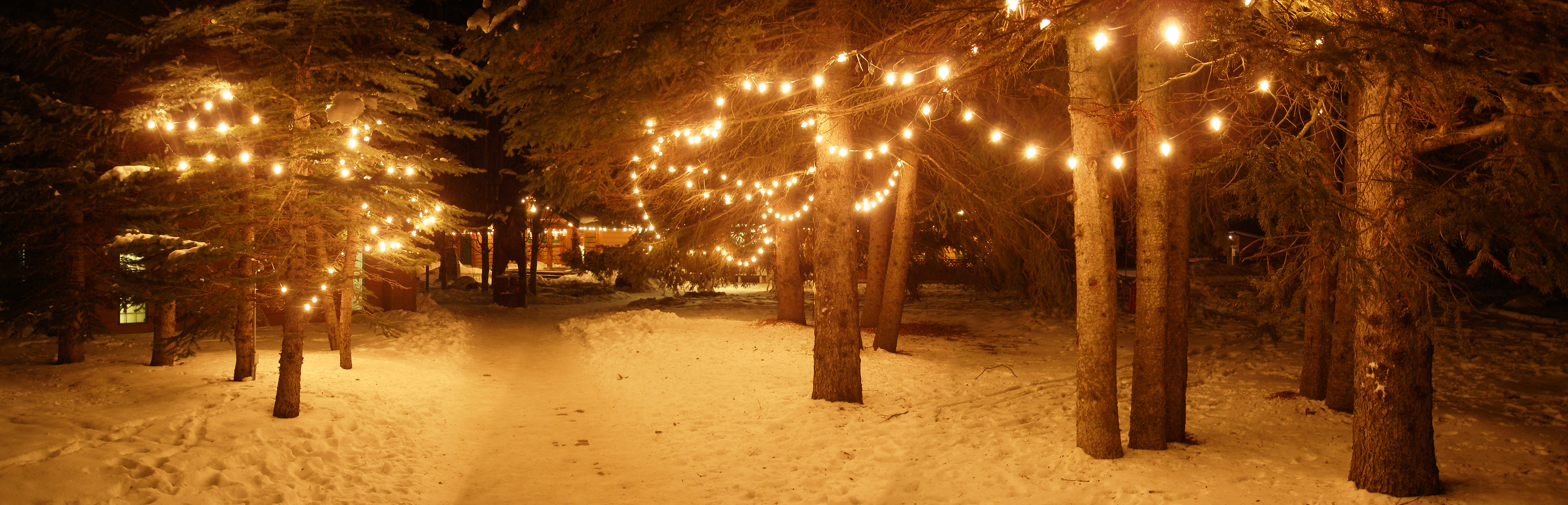 Your Northwest Winter Bucket List: Winter Family Fun From A t oZ ...
