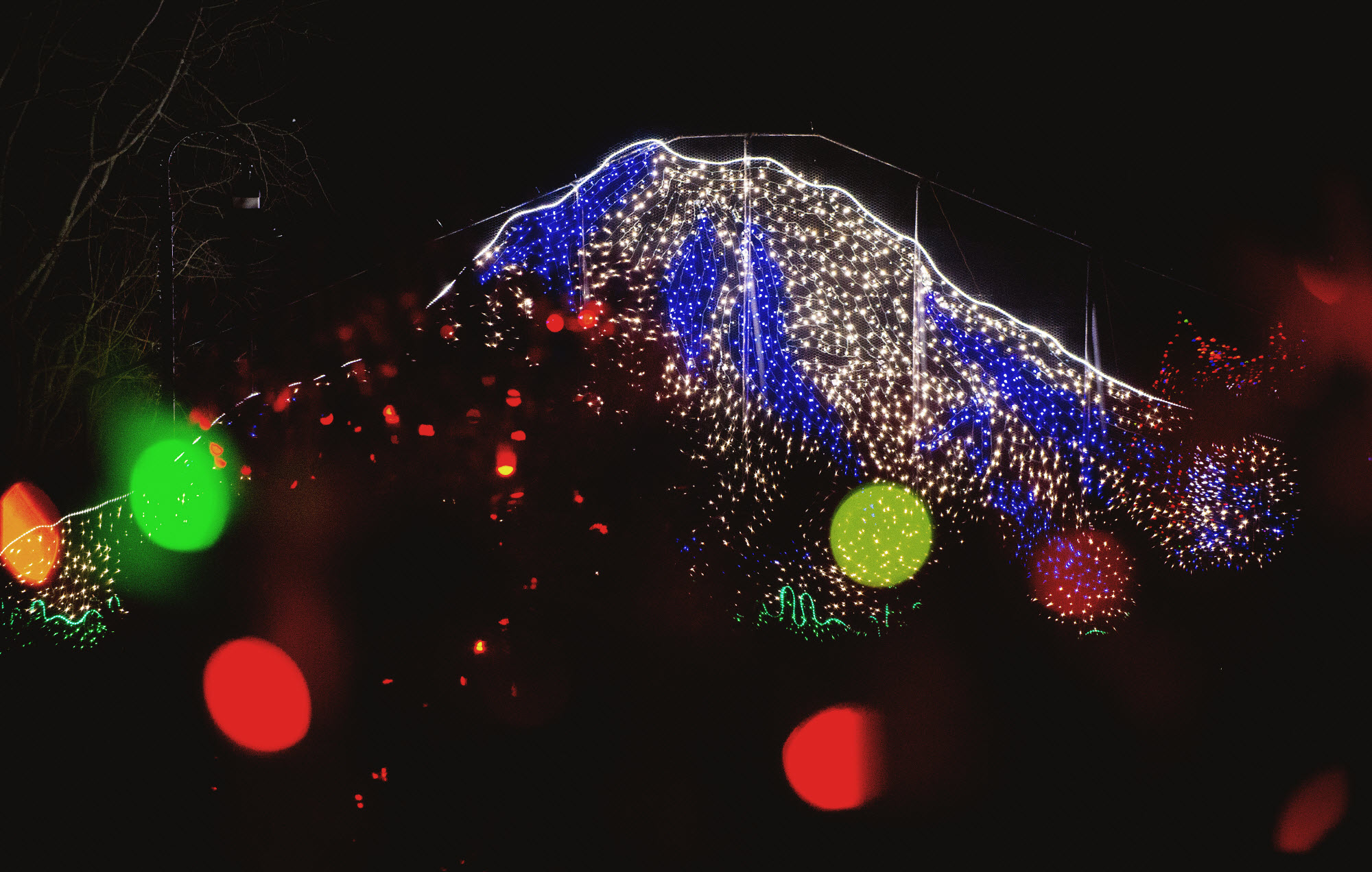 Holiday Review: Zoolights at Point Defiance Zoo & Aquarium   ParentMap