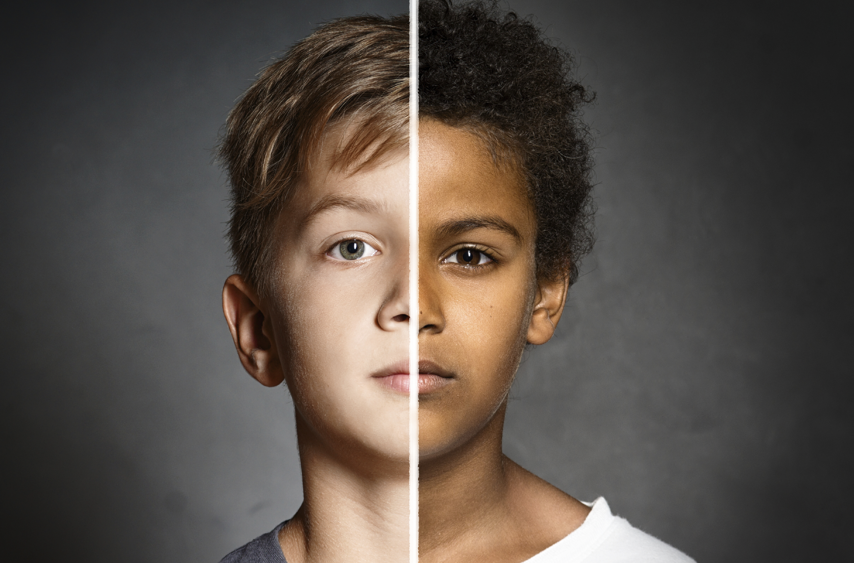 an analysis of the racism in human society