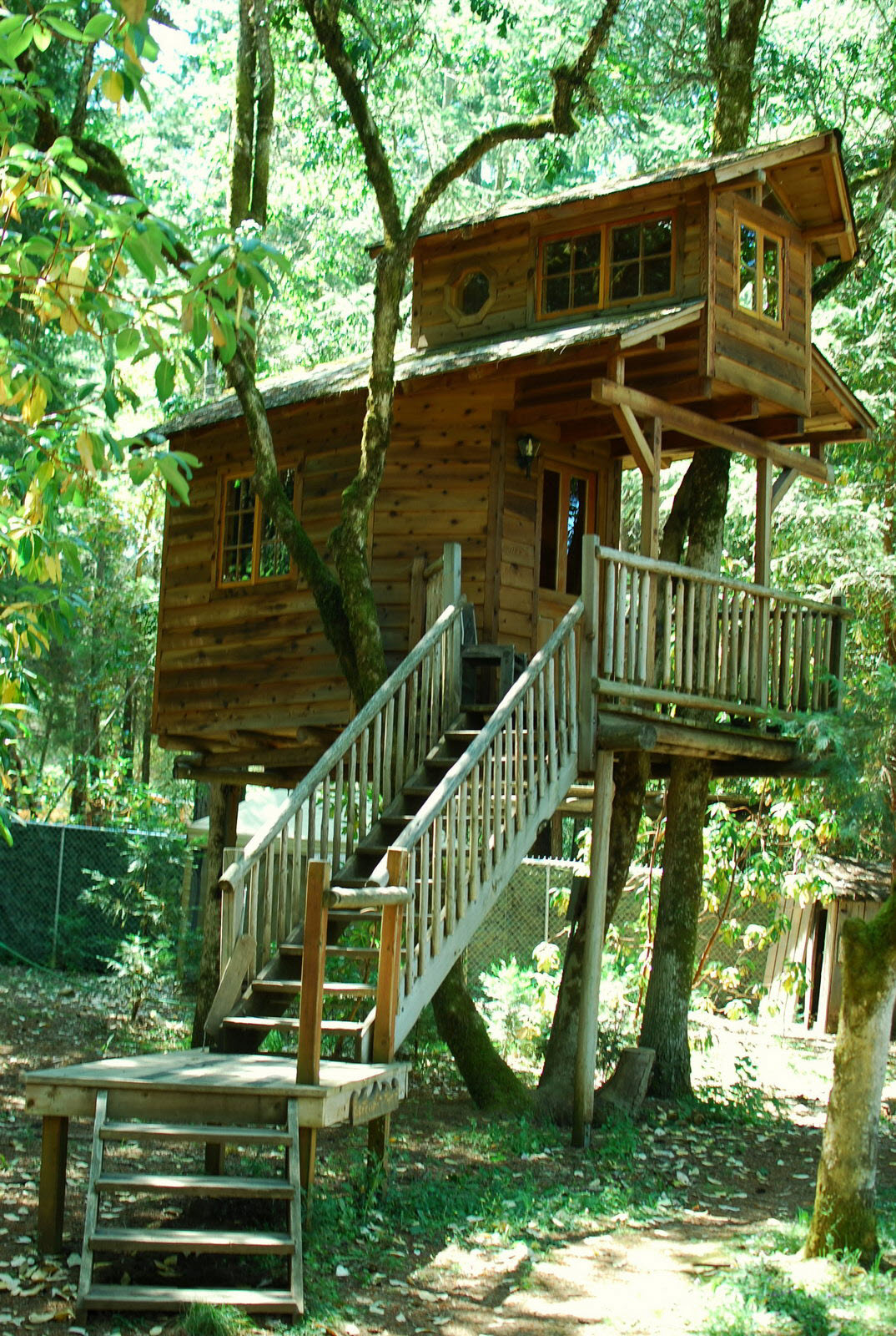 Lighthouse Treehouse Tiny House Oneofakind Lodgings