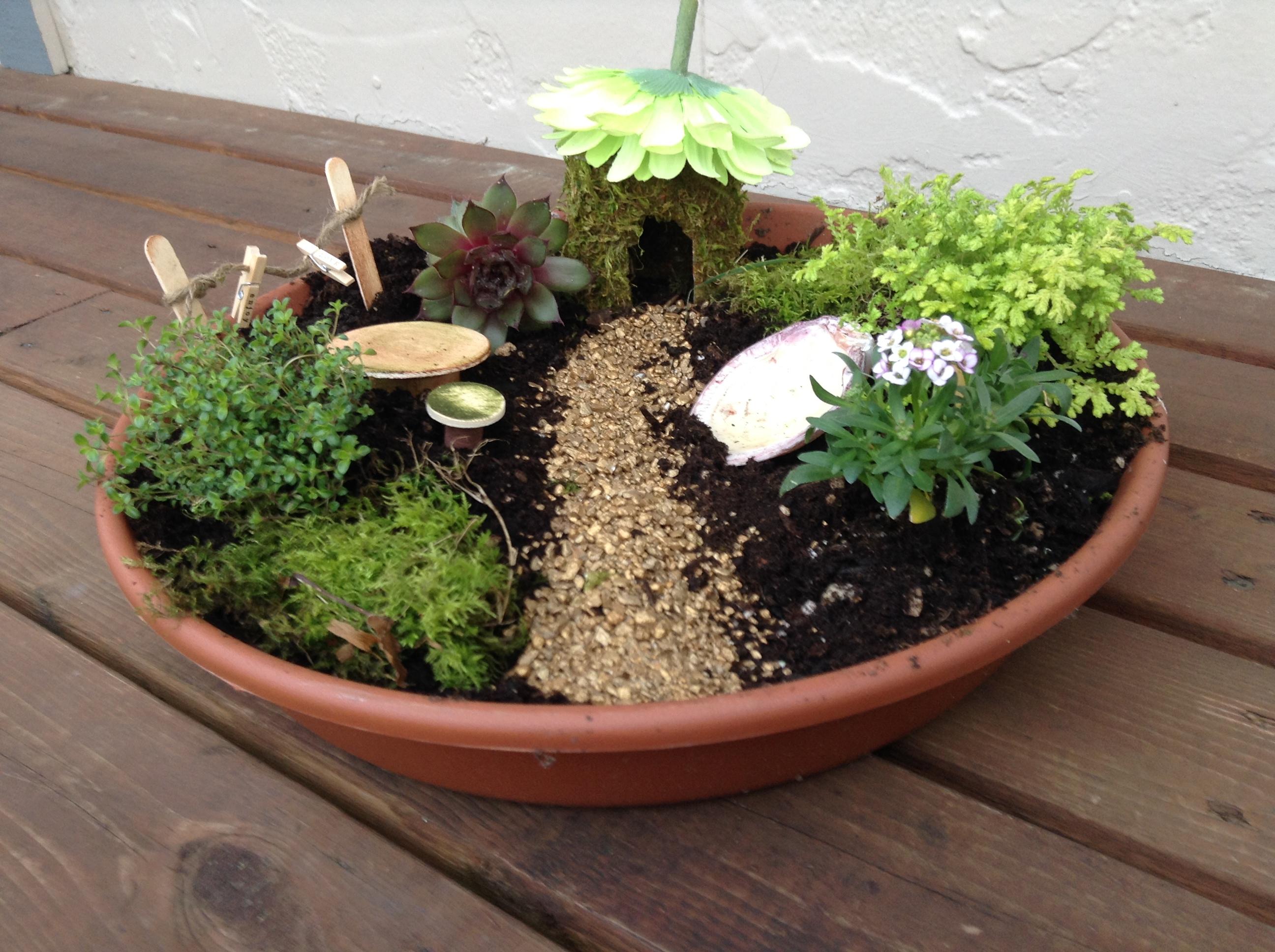 Gnome Garden: How To Plant A Fabulous Fairy Garden