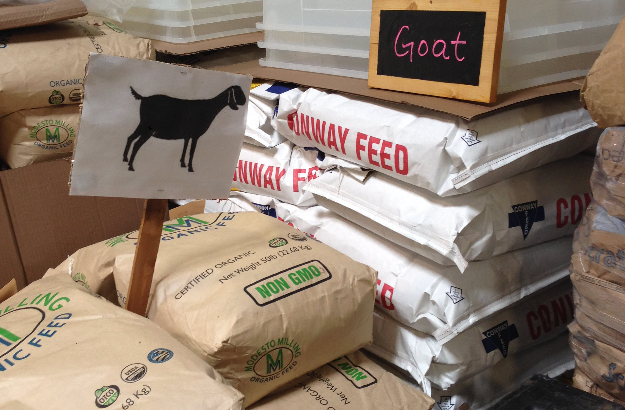 Goat feed at Seattle Farm Co-op