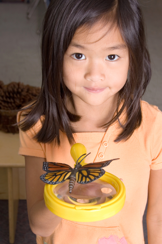 preschool girl holding butterfly and magnifying glass