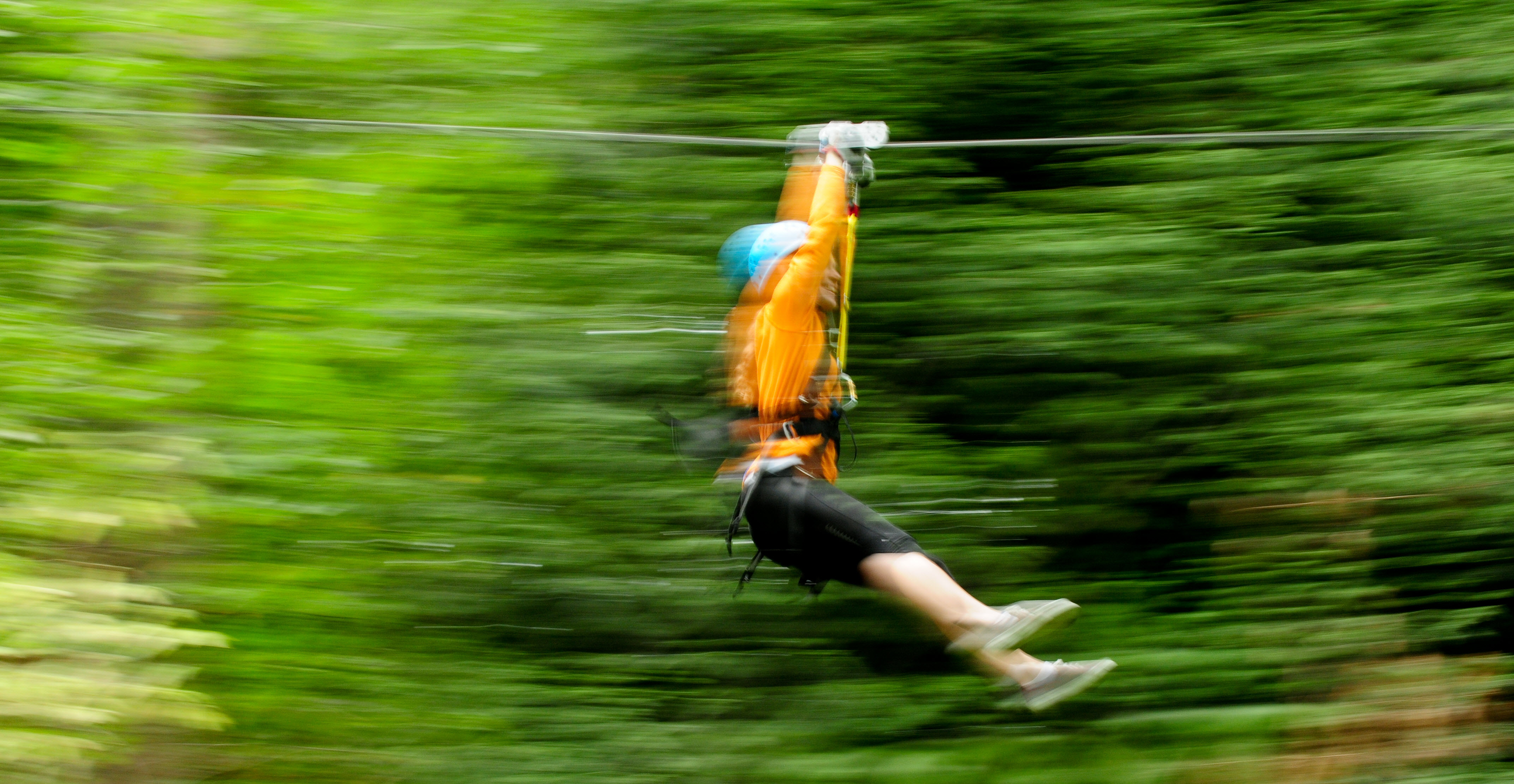 wheee bellevue u0027s zip tour and four other wild zip lines parentmap