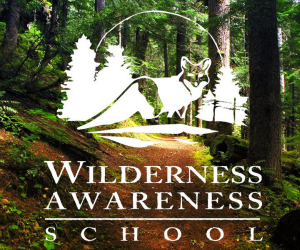 Best nature or environmental camp: Wilderness Awareness Camp