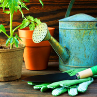 Gardening how-tos for families