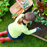 Tips for gardening in the Puget Sound