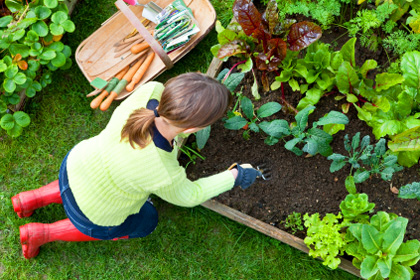 Strength exercise tips for gardeners