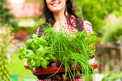 Woman getting started with a container garden