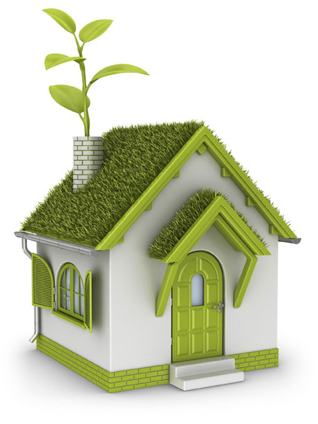 How to make your home more green and safe for kids