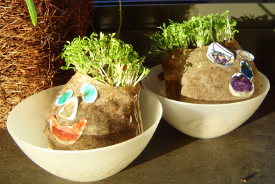 Christmas homemade Chia pets by Little Home on the Hill