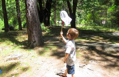 Bug hunt for kids by Go Explore Nature