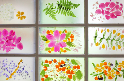 Homemade Flower Petal Stained Glass By The Artful Parent