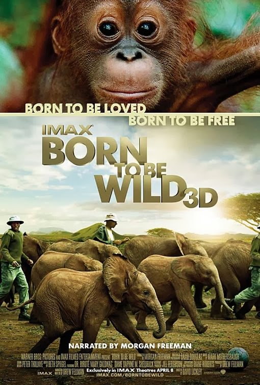Born to be Wild Documentary DVD cover