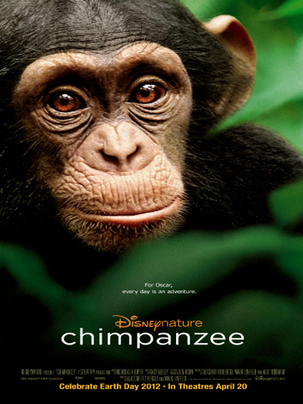 Chimpanzee Documentary DVD Cover