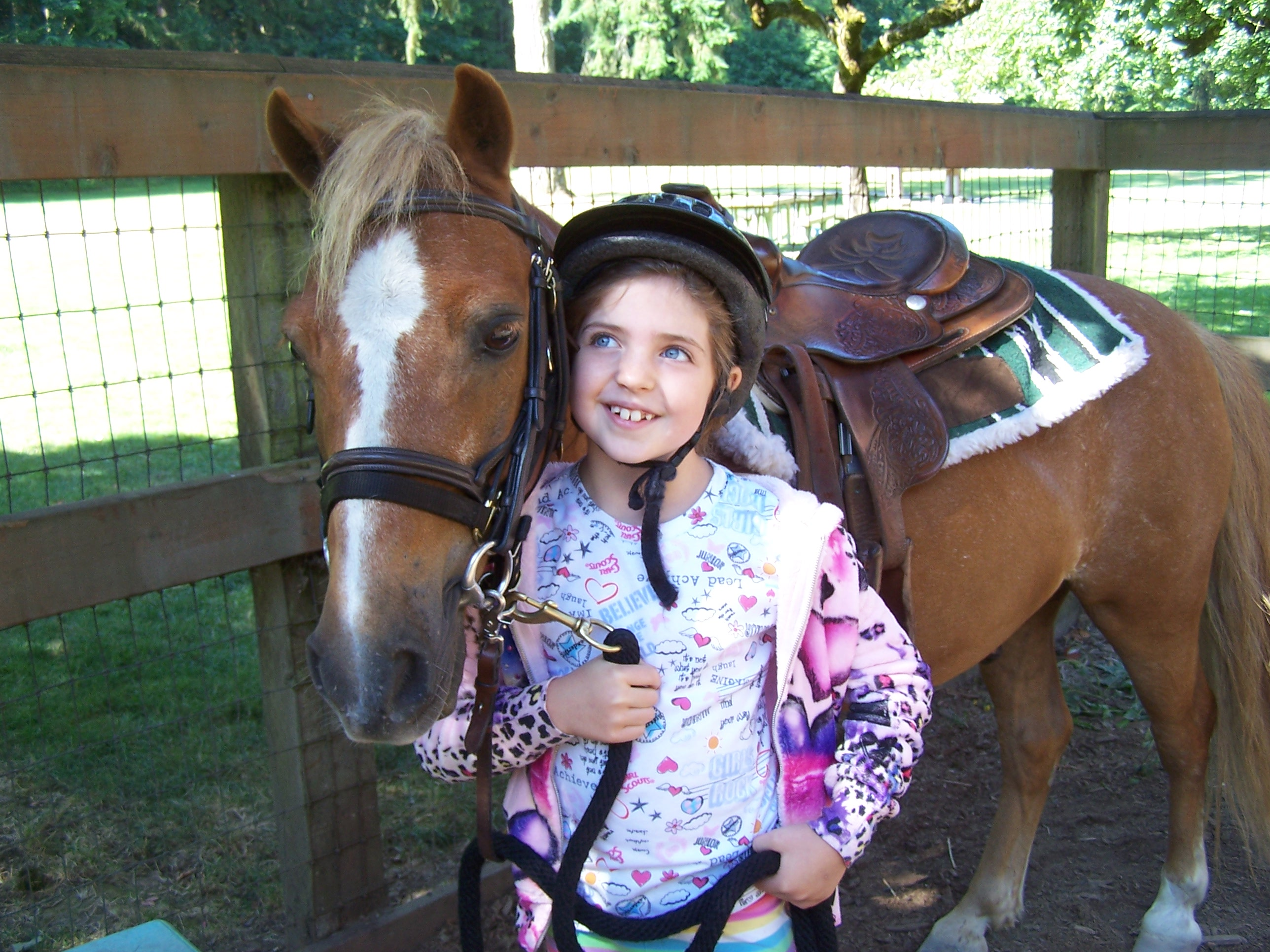 Finding A Great Horse Camp 8 Tips And 14 Horse Camps In