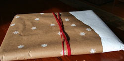 Snowy wrapping paper by Red Bird Crafts