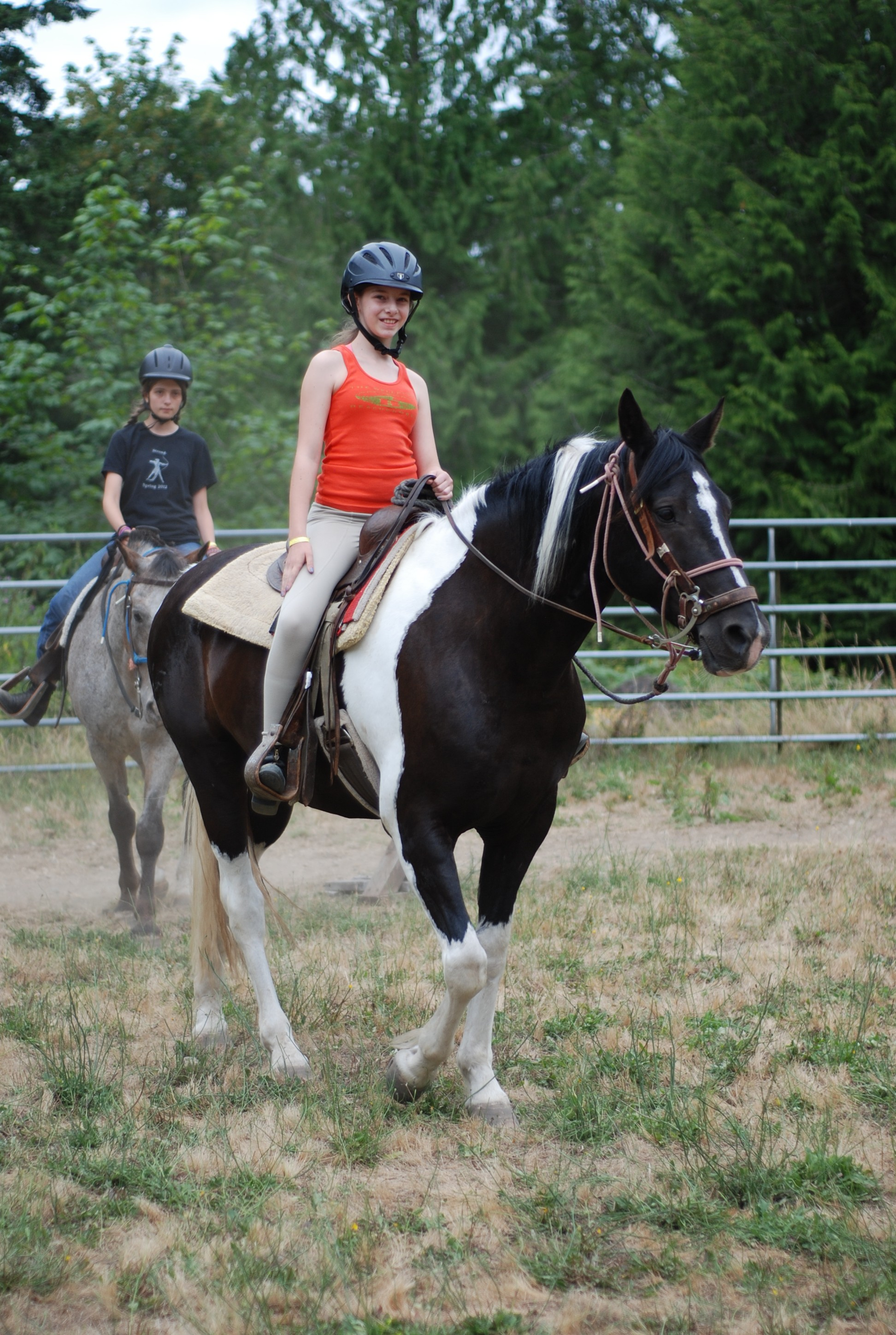 Finding a Great Horse Camp: 8 Tips and 14 Horse Camps in ...