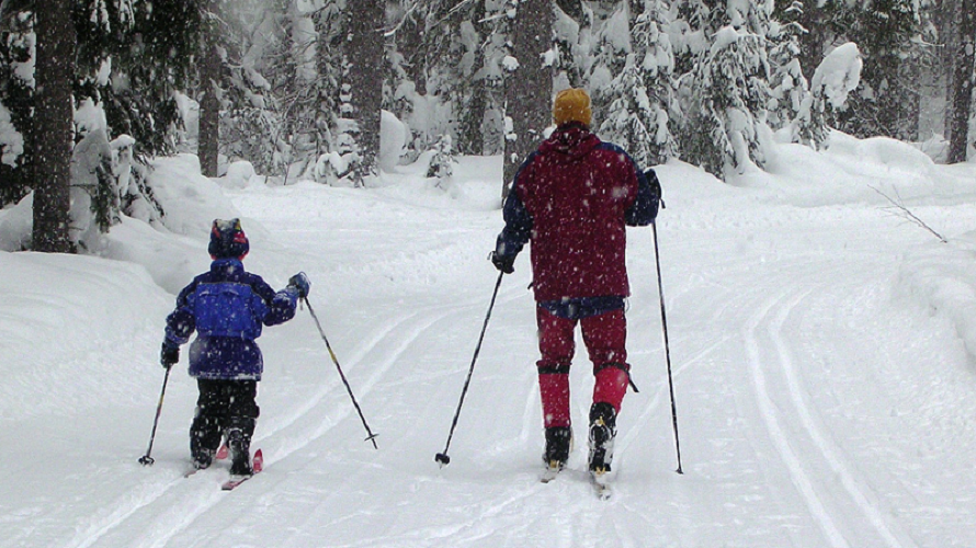 Making Tracks Cross Country Skiing For Seattle Area Kids