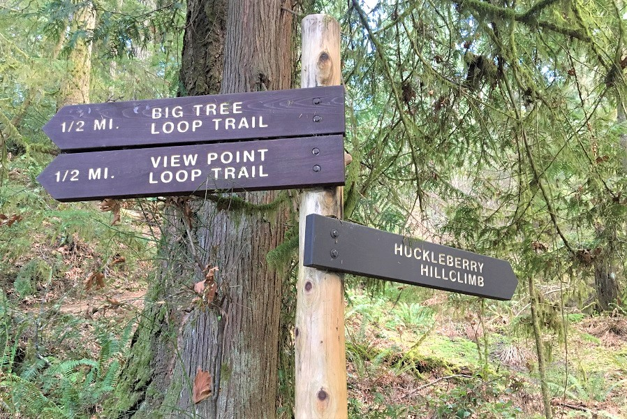 Nature trail signs at Alderbrook for families
