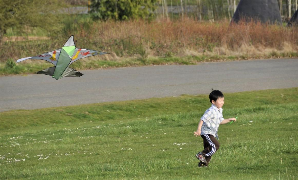 boy-flying-kite-magnuson-park-seattle-best-places-kites