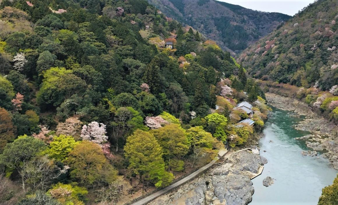 Togetsu-kyo-bridge-kyoto-arashiyama-Japan-sensory-travel-destination