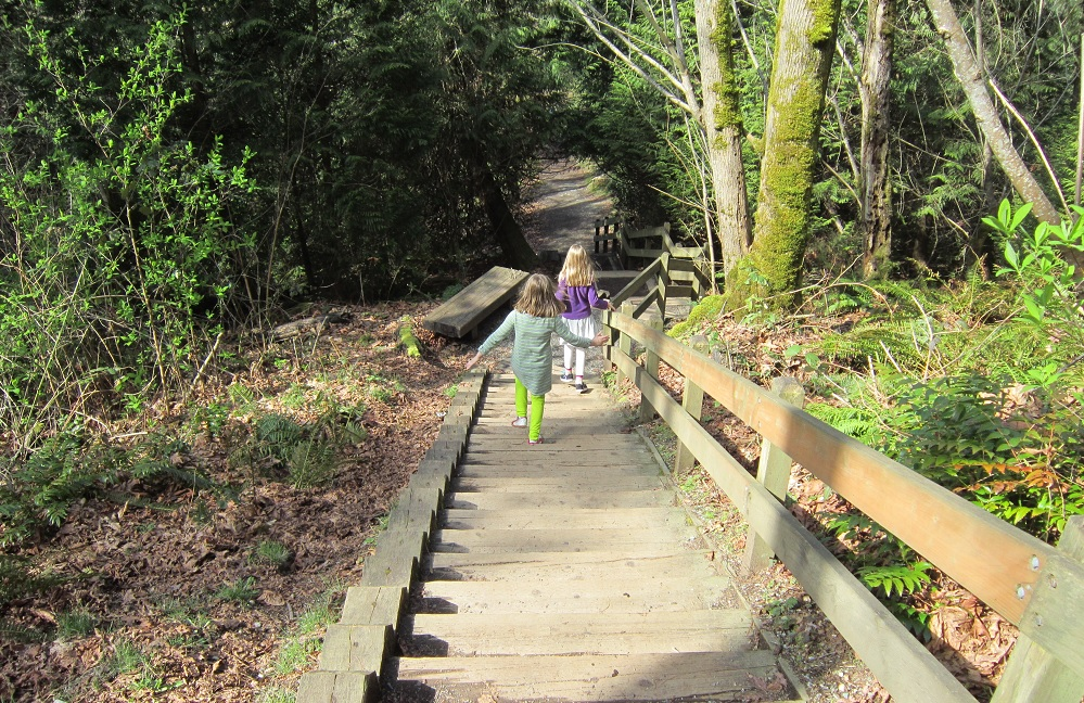 Staircase-walks-families-Bellevue-Eastside-Seattle-Kelsey-Creek-Farm-Park