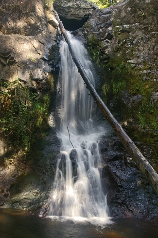 little mashel falls south sound area waterfall hikes for kids and families