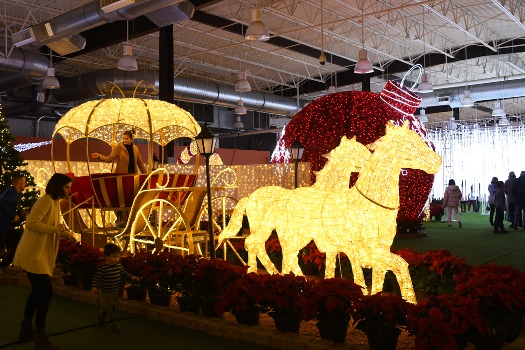 Lumaze-horsedrawn-carriage-light-show-seattle-review-kids-families