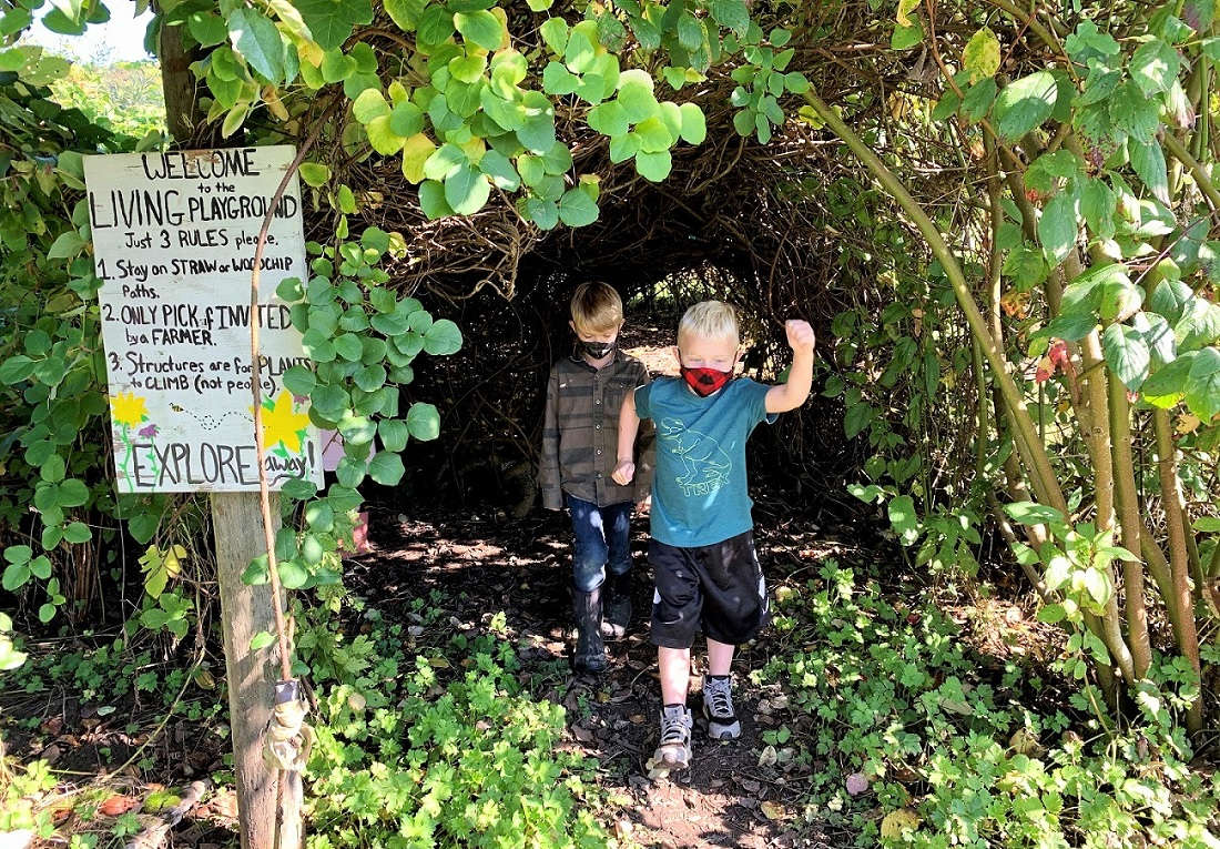 Kids at Oxbow Farm family adventure living playground vine tunnel