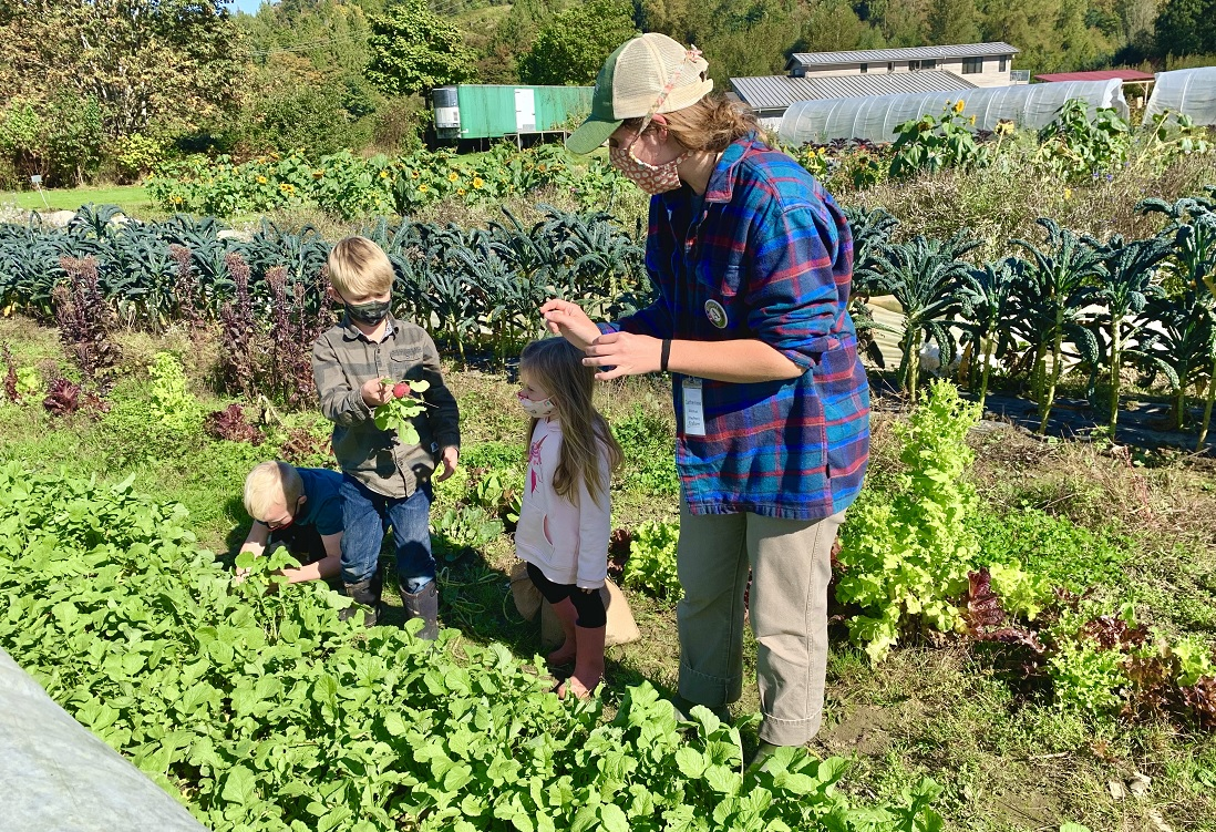 kids talking with farmer at Oxbow Farm family adventure private covid-safe field trip
