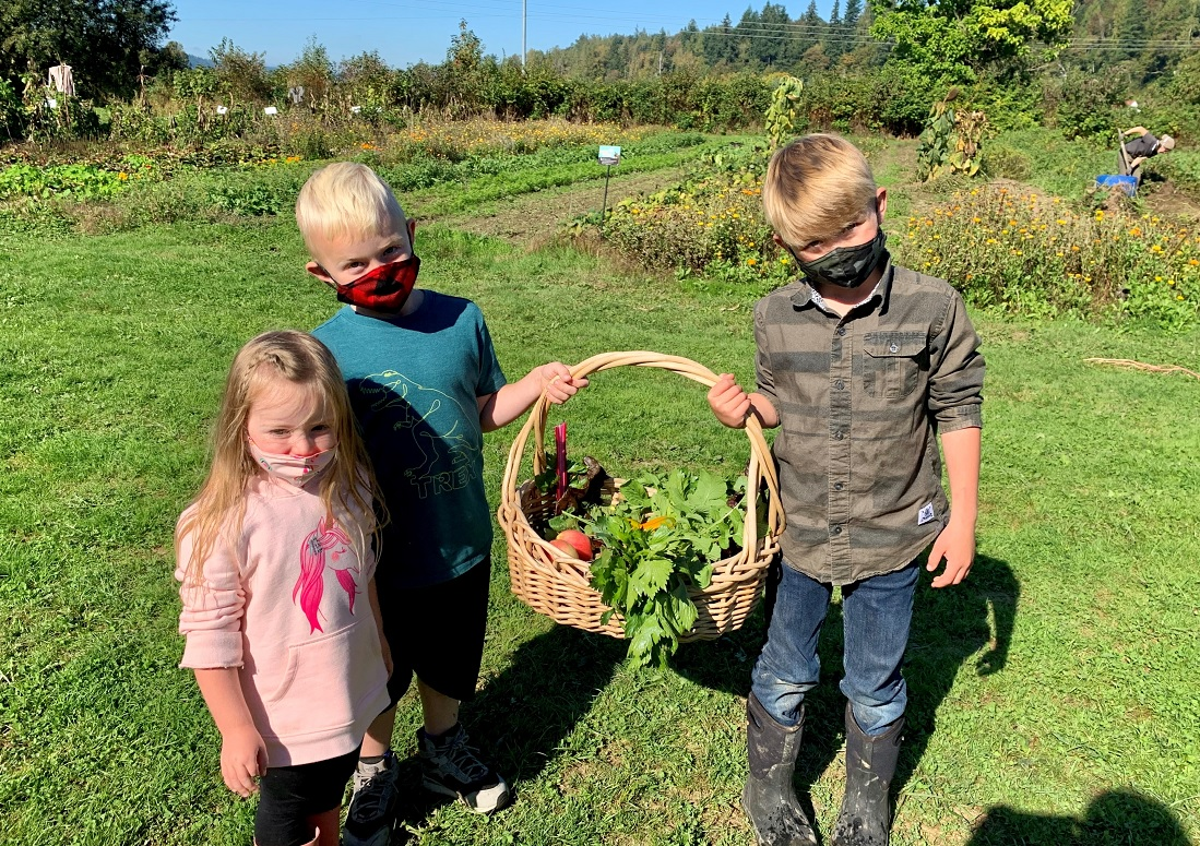 kids holding harvest basket at oxbow farm family adventure private covid-safe field trip