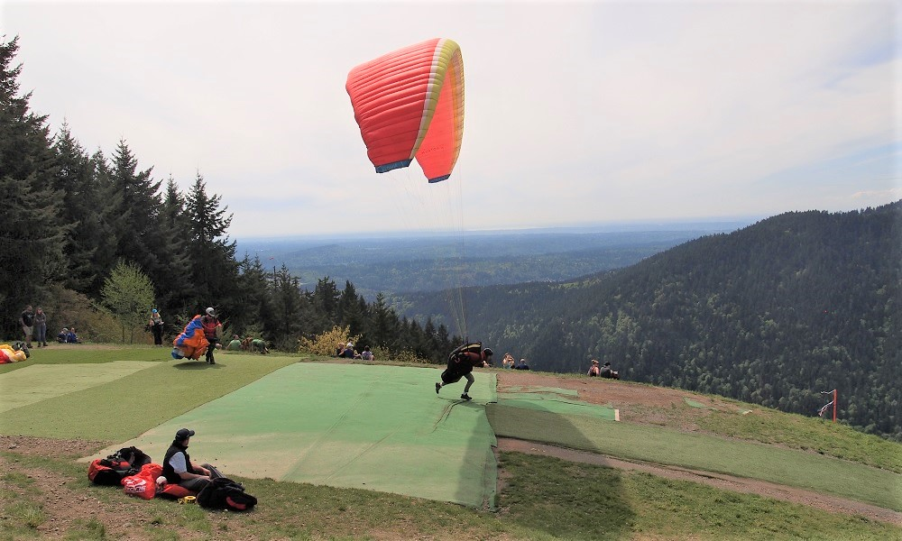Paraglider launching from Poo Poo Point