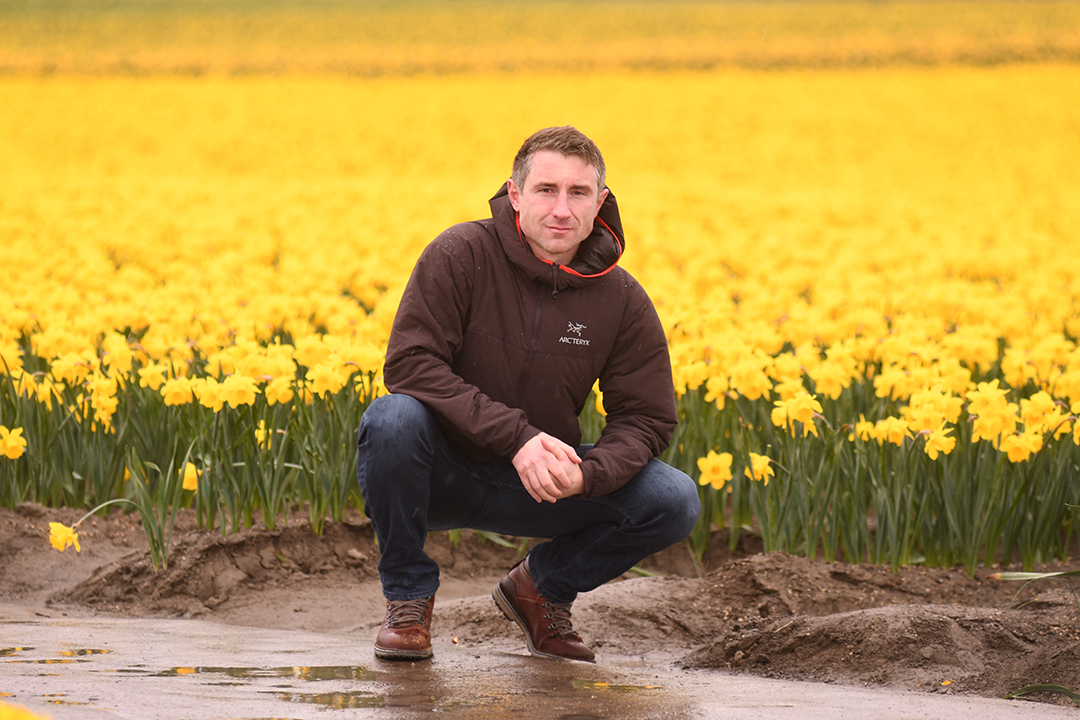 RoozenGaard tulip farmer Brent Roozen shown in 2021 in front of a field of his family's daffodils during the Skagit Valley Tulip Festival