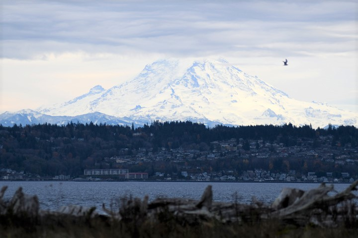 View of Rainier from Vashon