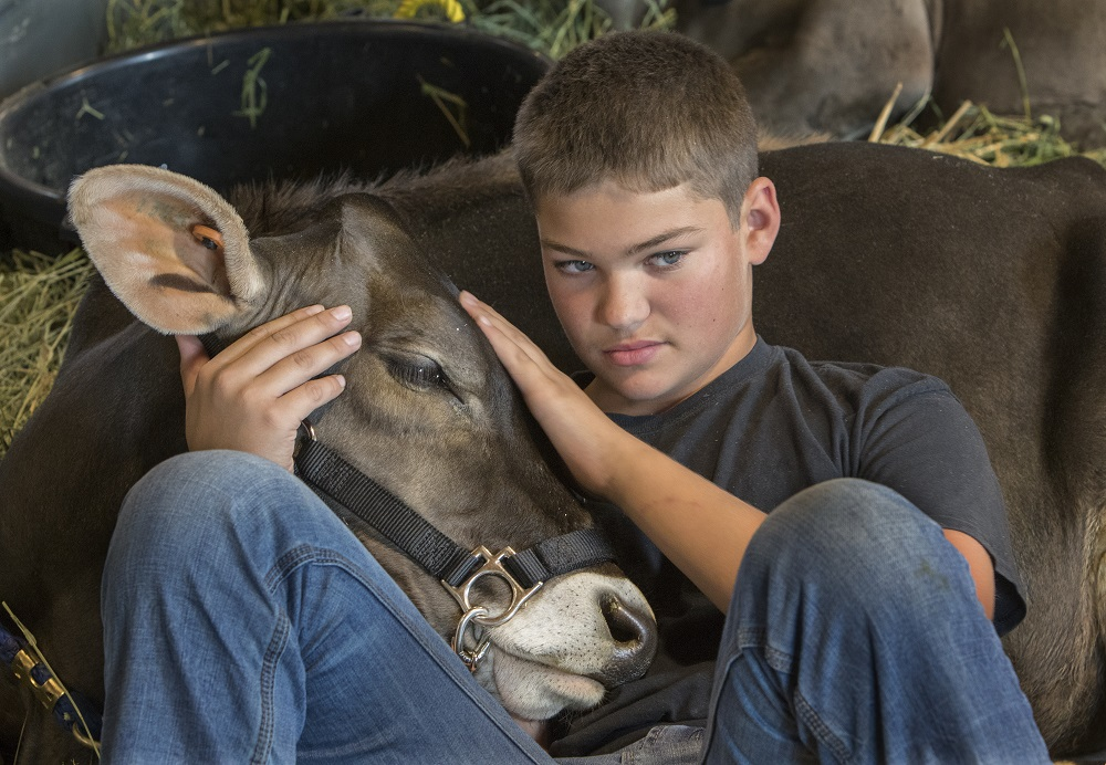 boy-livestock-washington-state-fair-puyallup-guide-for-families-kids