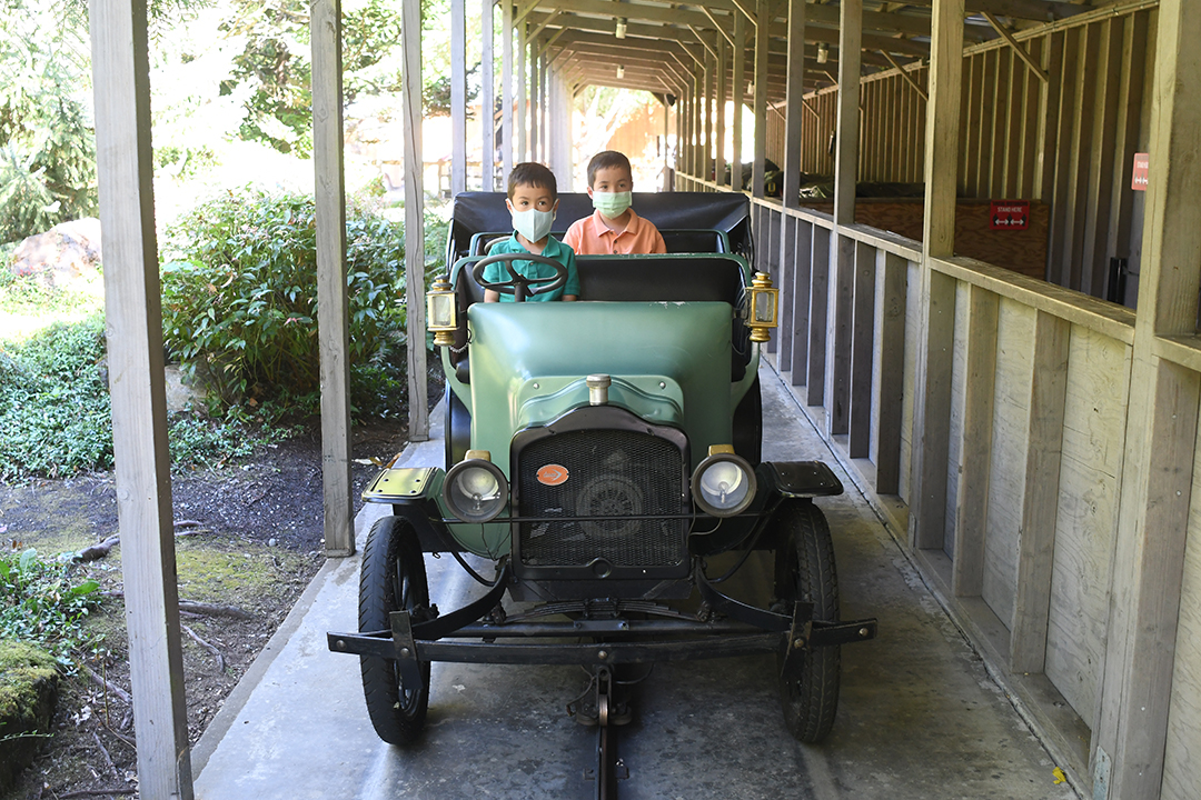The author's two sons enjoy a ride in an antique car