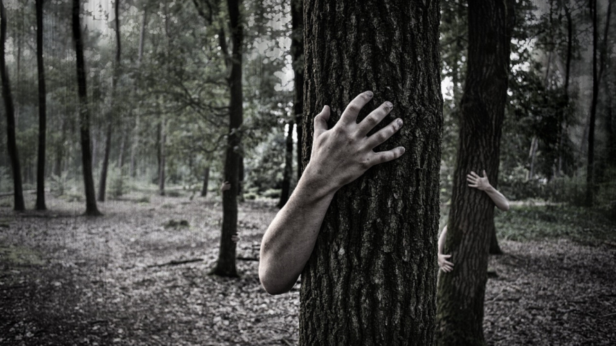 creepy-hands-on-trees
