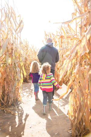 dad and daughters in corn maze