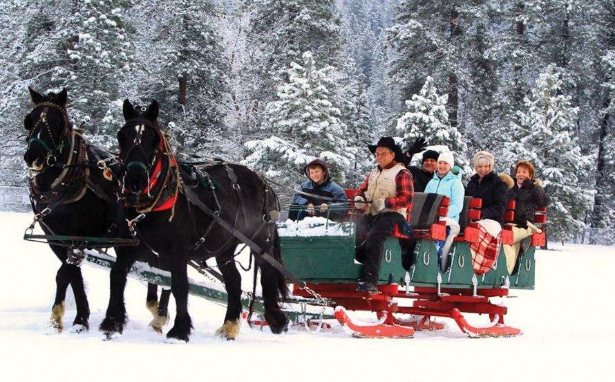 horse carriage with family