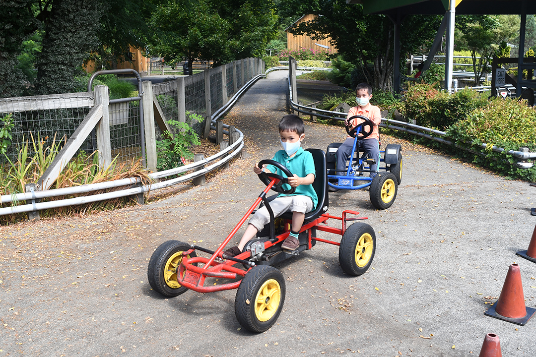 Two brothers ride pedal cars at Remlinger Farms' Family Fun Park
