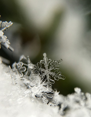 snowflake up close