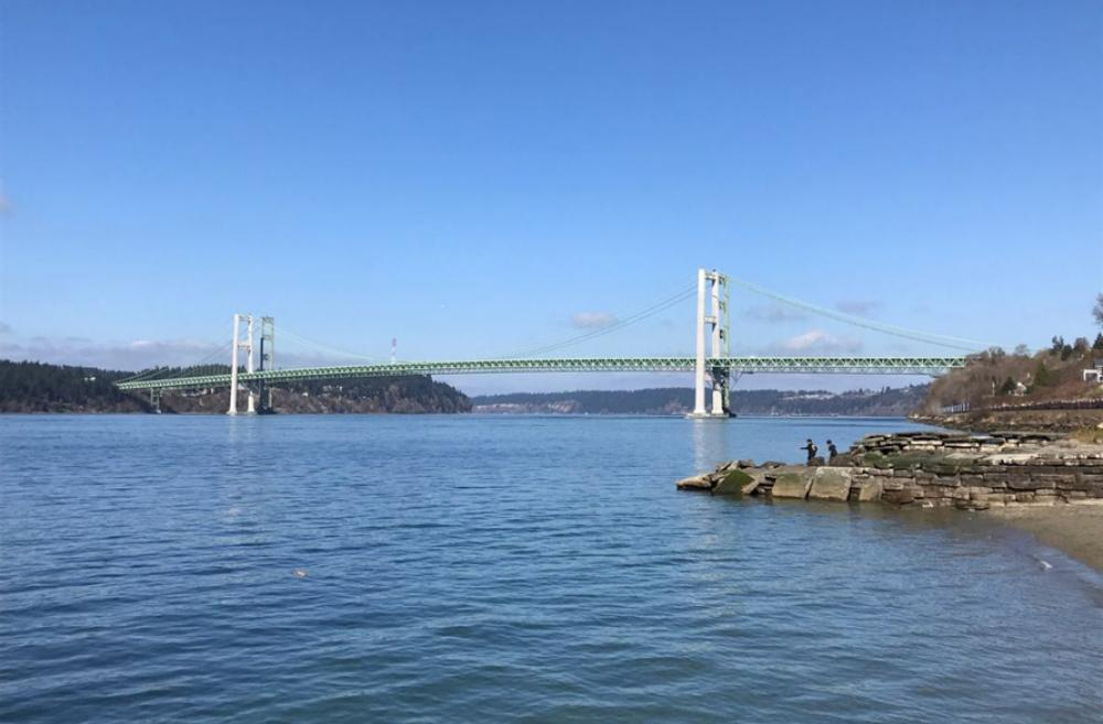 View-of-Tacoma-Narrows-Bridge-Titlow-Park-agents-of-discovery-nature-app-fun-kids-families