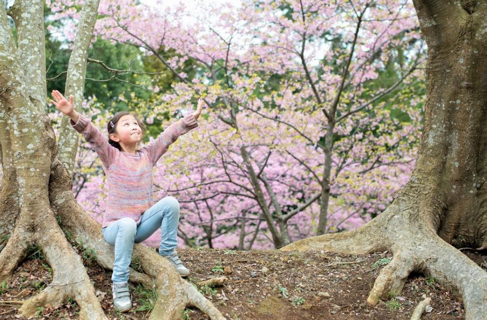 girl-arms-raised-amid-spring-blossoms-best-seattle-weekend-activities-familis-kids-bellevue-tacoma-eastside