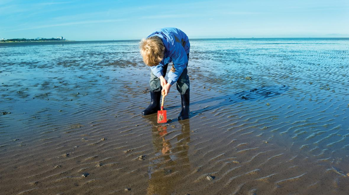 boy digging for clams