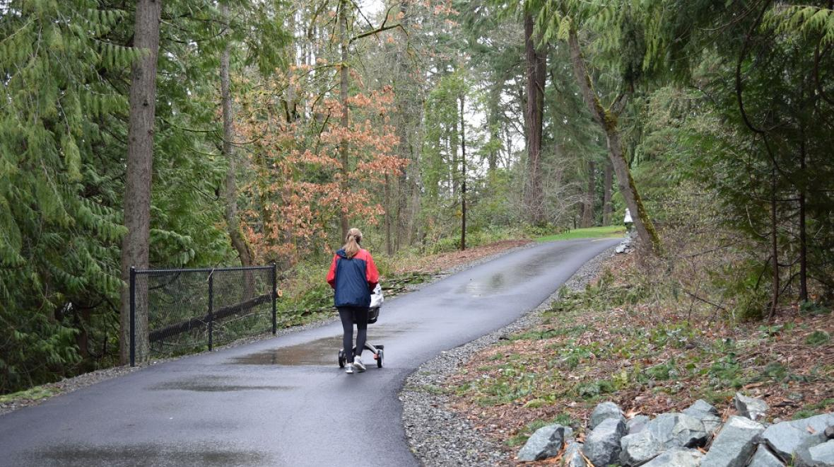 new path through Washington Park Arboretum