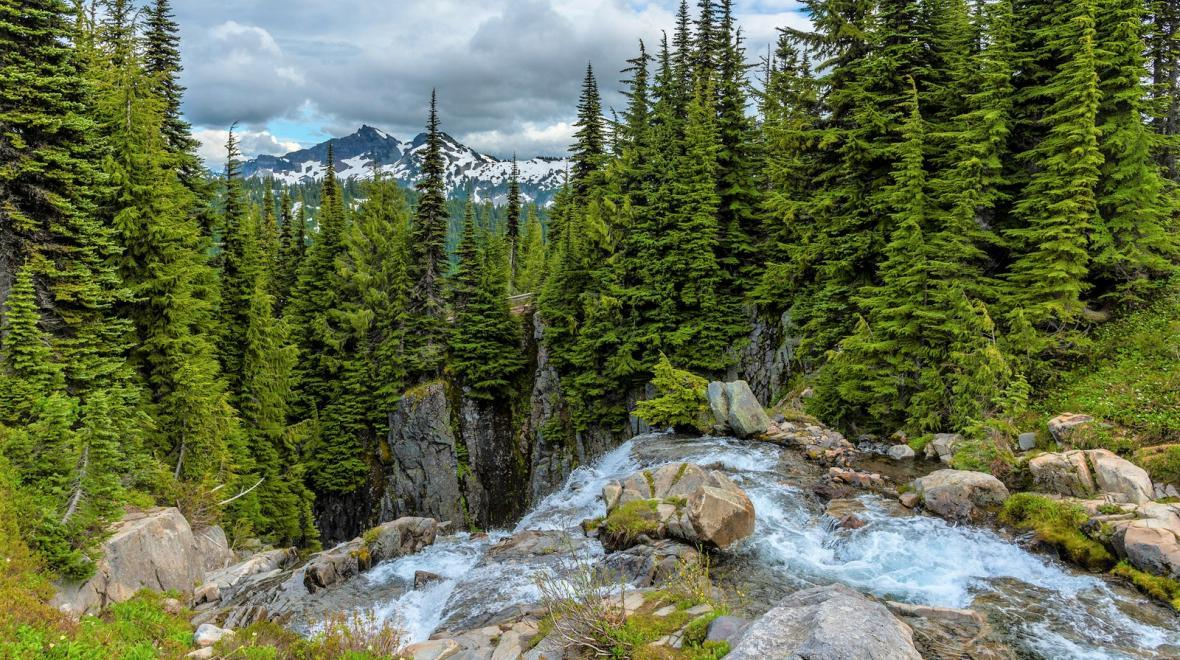 Myrtle Falls at Mount Rainier National Park