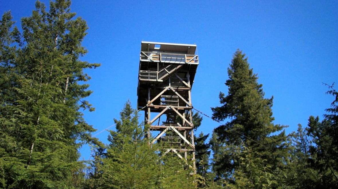 Heybrook Lookout Tower hike for kids who hate to hike
